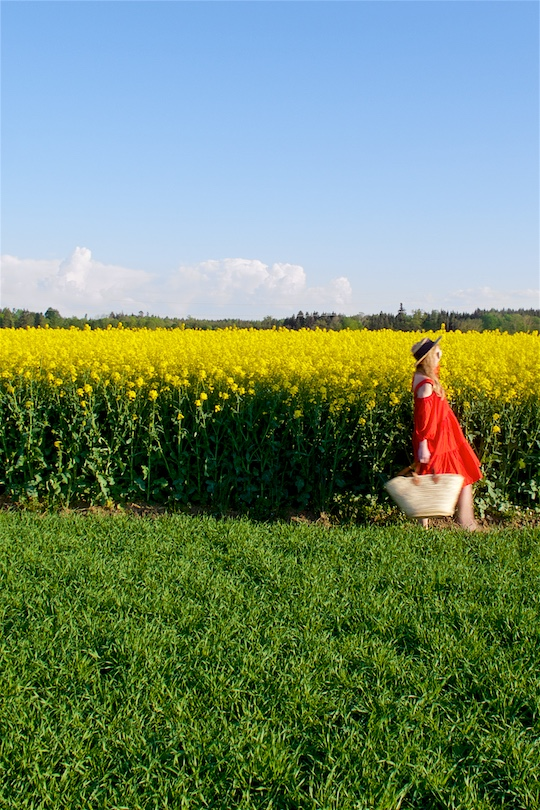 Canola Field. Fashion and Style Blog Girl from Heartfelt Hunt. Girl wearing a red off-shoulder dress, straw hat, sunglasses, straw tote and sandals.