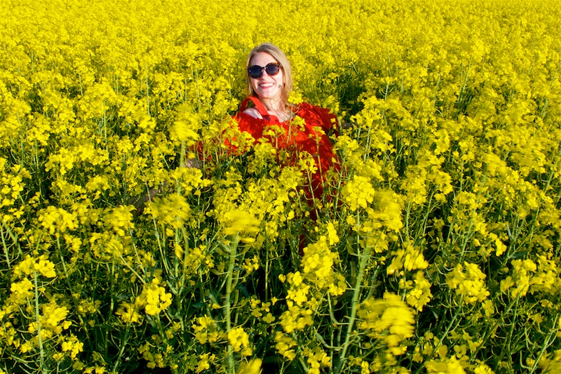 Canola Field. Fashion Blogger Girl by Style Blog Heartfelt Hunt. Girl wearing a red off-shoulder dress, sunglasses and sandals.