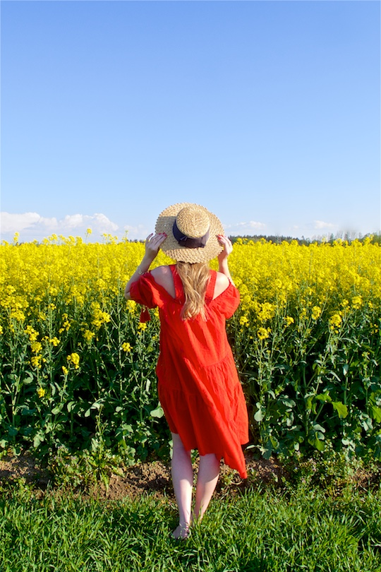 Canola Field. Fashion and Style Blog Girl from Heartfelt Hunt. Girl wearing a red off-shoulder dress, straw hat, sunglasses and sandals.