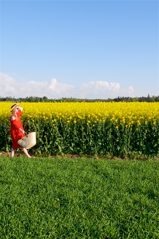 Canola Field. Fashion Blogger Girl by Style Blog Heartfelt Hunt. Girl wearing a red off-shoulder dress, straw hat, sunglasses, straw tote and sandals.