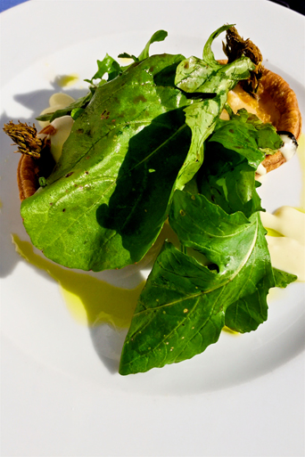 Delicious asparagus tart decorated with some lettuce leaves as a starter
