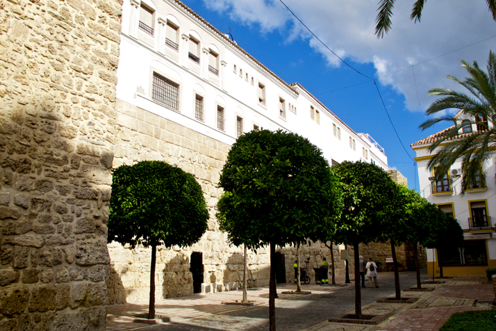 Trees and buildings in the beautiful old town of Marbella