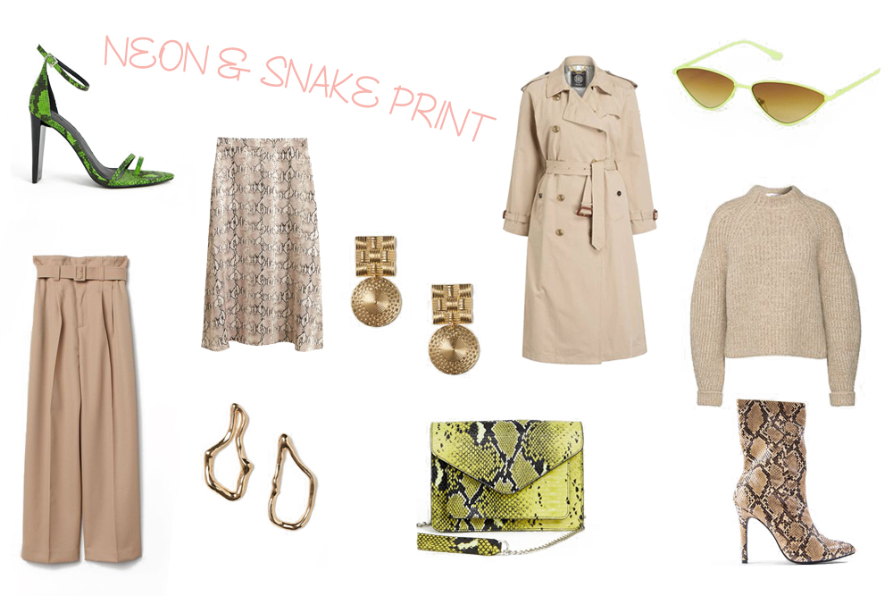 Inspiration Neon Snake Print. Fashion and Style Blog Girl from Heartfelt Hunt showing her inspiration for neon snake print.