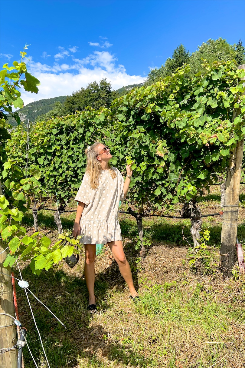Vineyard Visit. Fashion and Style Blog Girl from Heartfelt Hunt. Girl with blonde half-up half-down hairstyle with pearl scrunchie wearing a polka dot dress, slim sunglasses, vintage Gucci bag and quilted sandals.